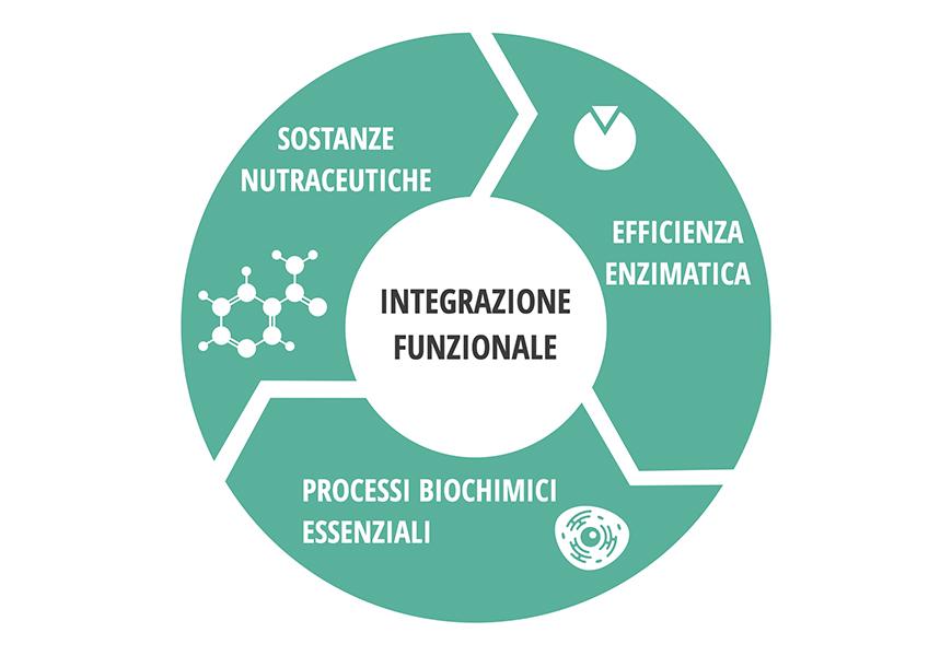 integrazione_funzionale_vital_program