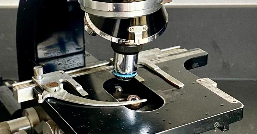 microscopio analisi lisozima