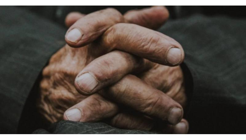 Integratori per la Memoria per Anziani: Quali Scegliere? Sono Davvero Efficaci?